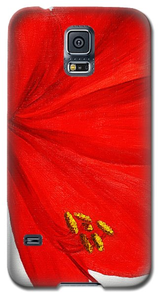 Amaryllis Flower Galaxy S5 Case
