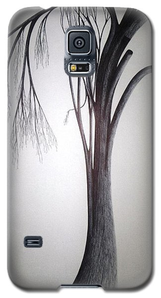 Amazing Dazzling Nature Galaxy S5 Case by Giuseppe Epifani