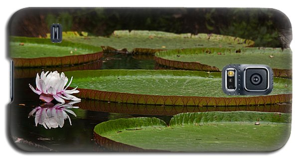 Galaxy S5 Case featuring the photograph Amazon Lily Pad by Farol Tomson