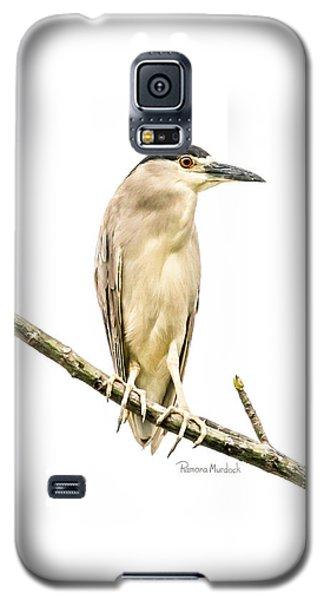 Amazonian Heron Galaxy S5 Case
