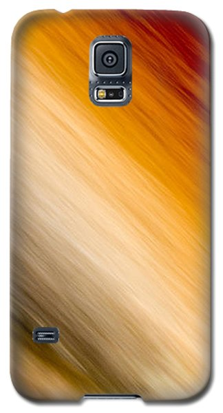 Galaxy S5 Case featuring the photograph Amber Diagonal by Darryl Dalton