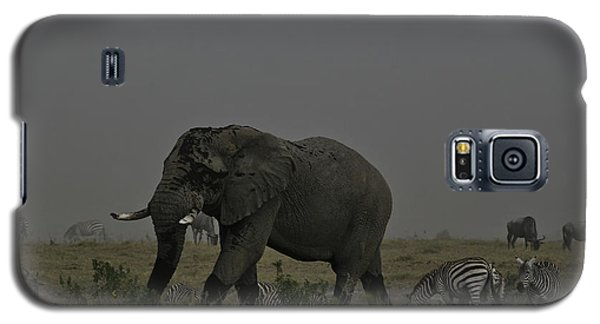 Galaxy S5 Case featuring the photograph Amboseli Giant by Gary Hall