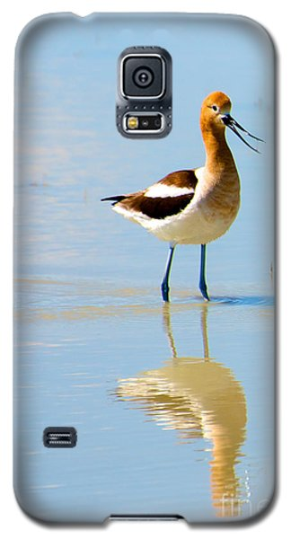 Galaxy S5 Case featuring the photograph American Avocet by Vinnie Oakes
