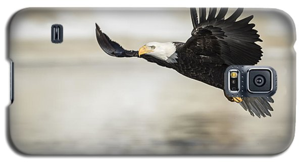 American Bald Eagle 2015-22 Galaxy S5 Case
