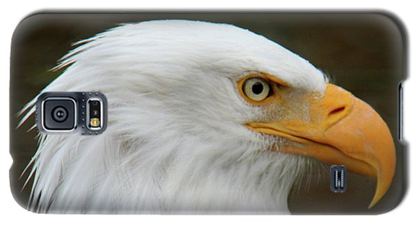 Galaxy S5 Case featuring the photograph American Bald Eagle by Bob and Jan Shriner