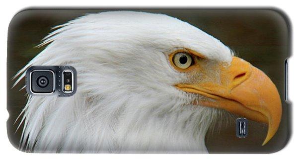 American Bald Eagle Galaxy S5 Case