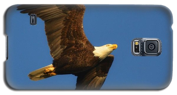 Galaxy S5 Case featuring the photograph American Bald Eagle Close-ups Over Santa Rosa Sound With Blue Skies by Jeff at JSJ Photography