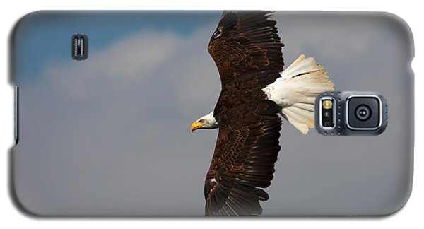American Bald Eagle In Flight Galaxy S5 Case