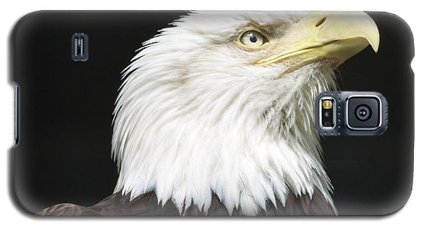 American Bald Eagle Profile Galaxy S5 Case