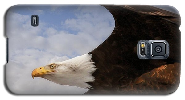 Galaxy S5 Case featuring the photograph American Bald Eagle Up Close And Personal by Eleanor Abramson
