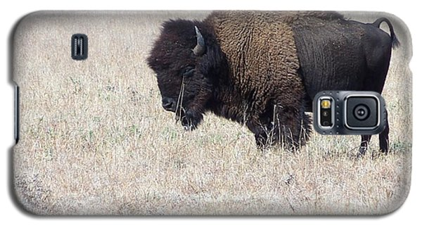 Galaxy S5 Case featuring the photograph American Bison by Alan Lakin