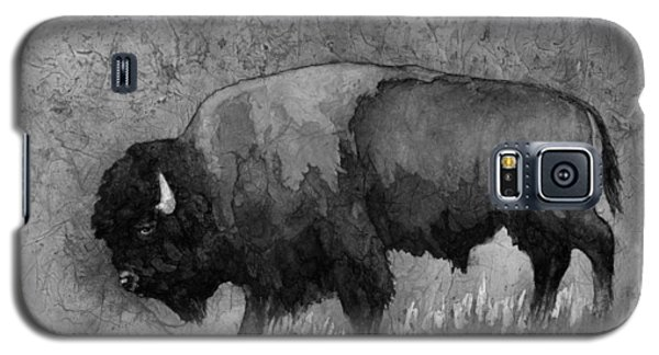 Bison Galaxy S5 Case - Monochrome American Buffalo 3  by Hailey E Herrera