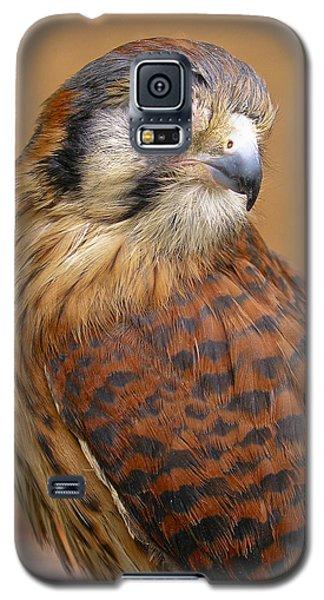 American Kestrel Galaxy S5 Case