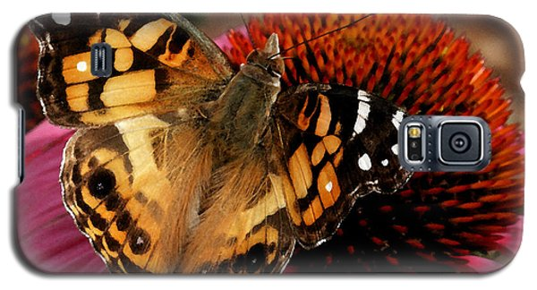 Galaxy S5 Case featuring the photograph American Lady  by James C Thomas