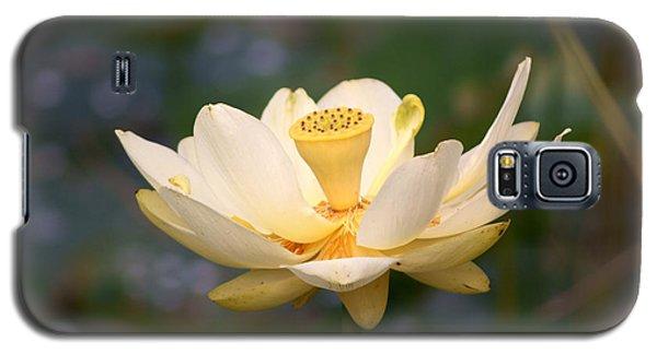 American Lotus Galaxy S5 Case by B Wayne Mullins