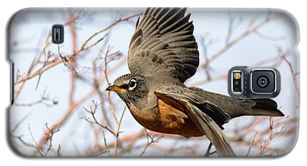 Galaxy S5 Case featuring the photograph American Robin In Flight by Stephen  Johnson