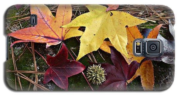 Autumn Galaxy S5 Case by William Tanneberger