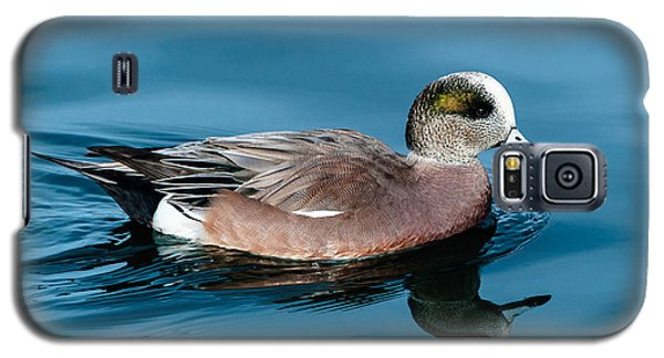 American Wigeon Galaxy S5 Case