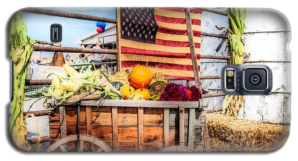 Americana Farm Scene Galaxy S5 Case by Eleanor Abramson