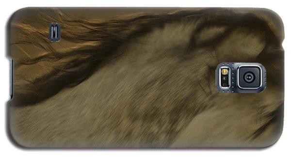 Americano 2 Galaxy S5 Case