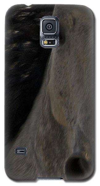 Americano 3 Galaxy S5 Case