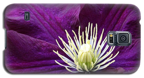 Amethyst Colored Clematis Galaxy S5 Case