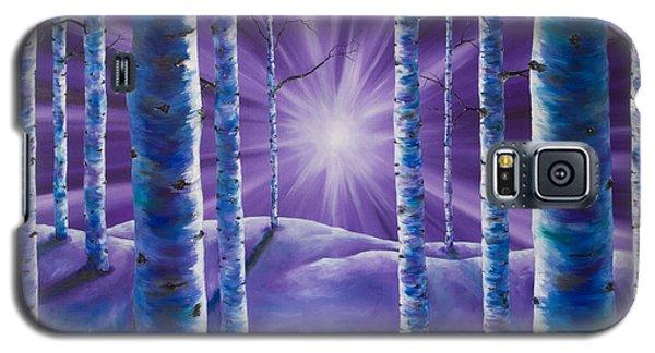 Amethyst Winter Galaxy S5 Case