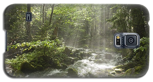 Ammonoosuc Ravine Trail - White Mountains Nh Usa Galaxy S5 Case