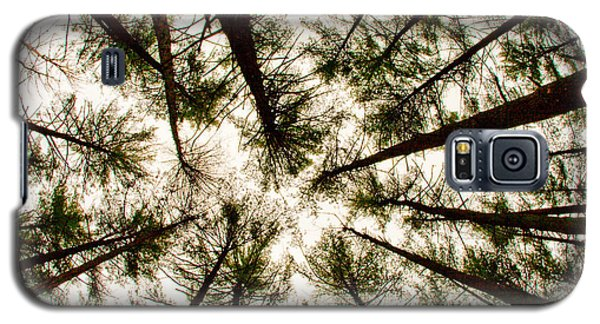 Among The Trees Galaxy S5 Case