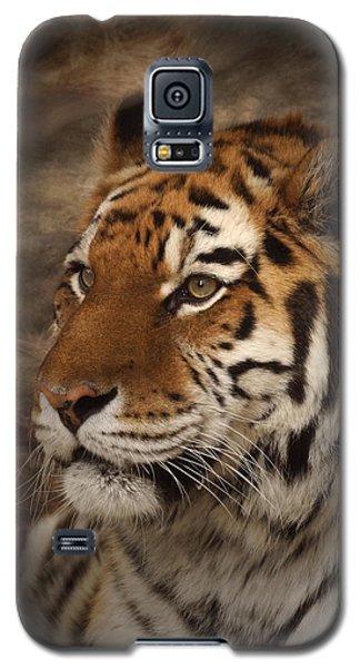 Amur Tiger 2 Galaxy S5 Case