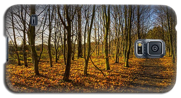 An Autumn Walk Galaxy S5 Case