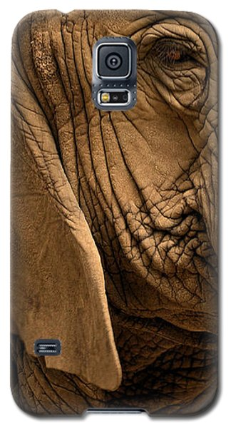 Galaxy S5 Case featuring the photograph An Elephant's Eye by Nadalyn Larsen
