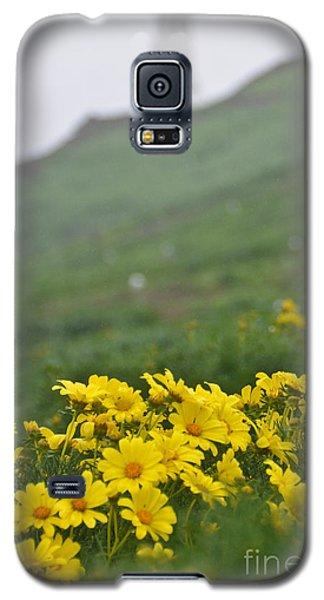 Anacapa Spring Galaxy S5 Case