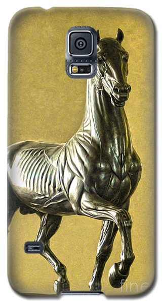 Anatomical Horse Galaxy S5 Case