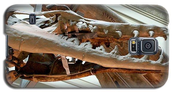 Ancient Crocodile Dinosaur Galaxy S5 Case