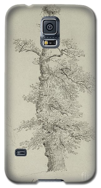 Ancient Oak Tree With A Storks Nest Galaxy S5 Case