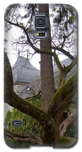 Galaxy S5 Case featuring the photograph Ancient Tree At Chateau De Chenonceau by Susan Alvaro