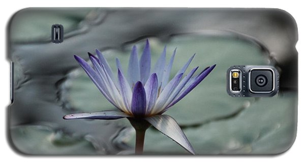 Galaxy S5 Case featuring the photograph ...and Cue Lily  by Lynn England