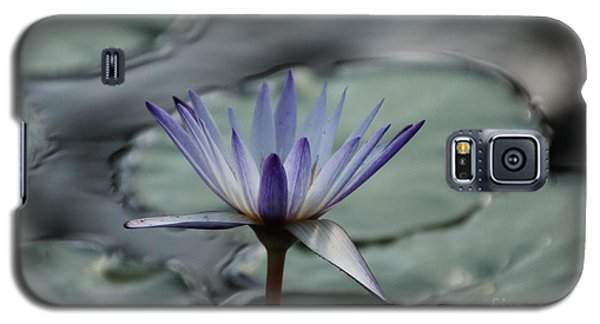 ...and Cue Lily  Galaxy S5 Case by Lynn England