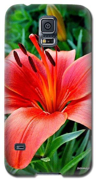 Andrea's Lily Galaxy S5 Case