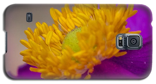 Galaxy S5 Case featuring the photograph Anemone by Cathy Donohoue