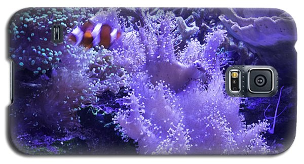 Anemone Starlight Galaxy S5 Case