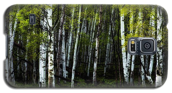 Galaxy S5 Case featuring the photograph Anew by The Forests Edge Photography - Diane Sandoval