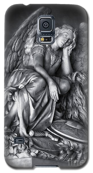 Angel And Lion Galaxy S5 Case
