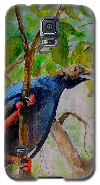 Angel Bird Of  North Moluccas Galaxy S5 Case