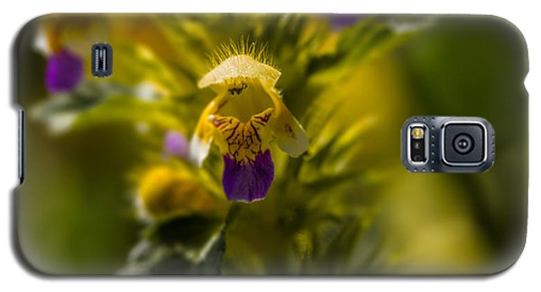 Galaxy S5 Case featuring the photograph Angel? by Leif Sohlman