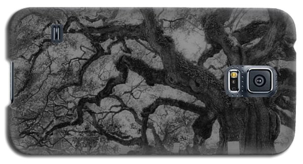 Angel Oak B And W Galaxy S5 Case