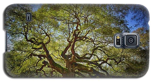 Angel Oak Galaxy S5 Case