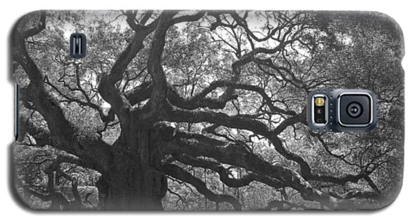 Angel Oak II - Black And White Galaxy S5 Case