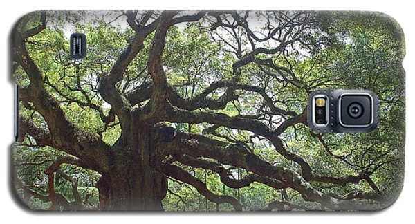 Angel Oak II Galaxy S5 Case